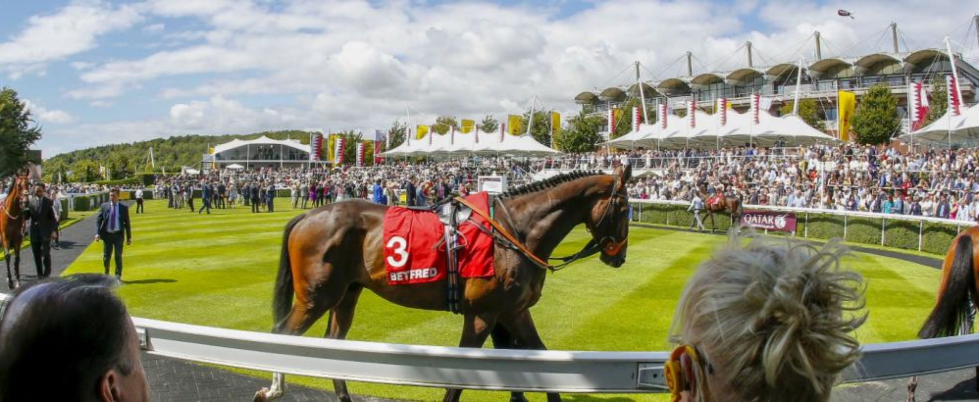 Image result for parade ring ireland